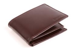 Ponadczasowy portfel męski skórzany PPM6 kolor brązowy